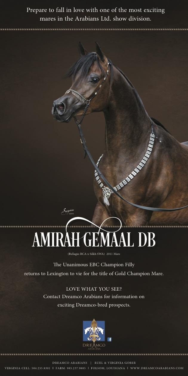 Amirah-Gemaal-0515-Eblast
